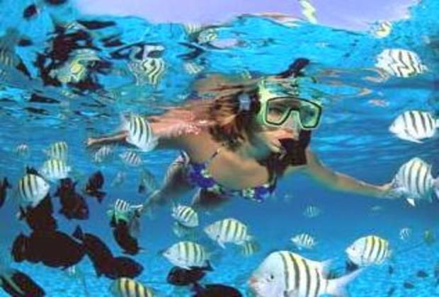 Snorkeling during our snorkel tour from Punta Cana