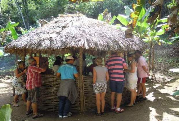 Jungle bar on farm Chavon