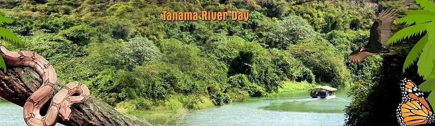 Discover the Chavon River with the Tanama River day from Punta Cana and Bayahibe