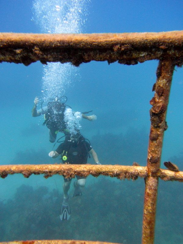 Wreck diving large